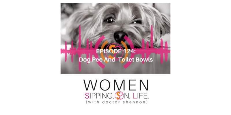 EPISODE 124: Dog Pee And Toilet Bowls