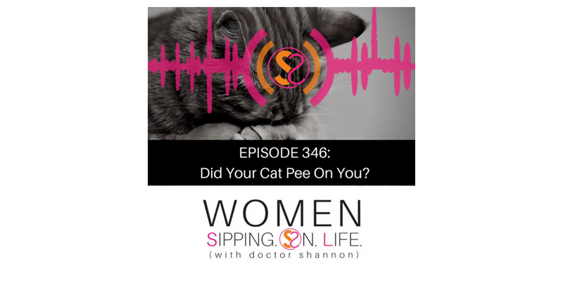 EPISODE 346: Did Your Cat Pee On You?