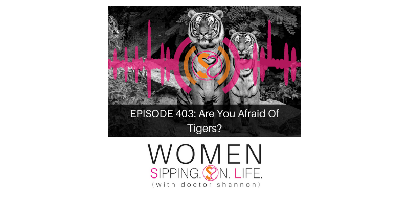 EPISODE 403: Are You Afraid Of Tigers?