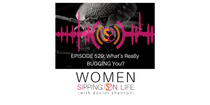 EPISODE 529: What's Really BUGGING You?