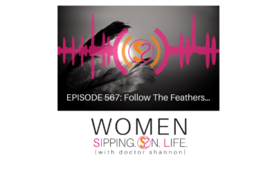 EPISODE 567: Follow The Feathers…