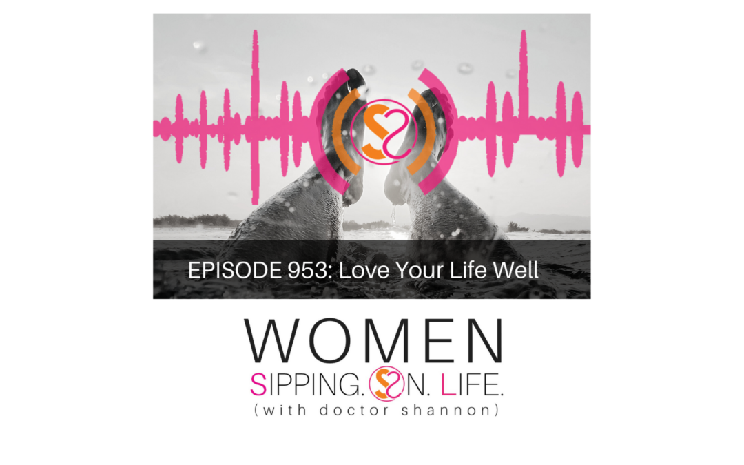 EPISODE 953: Love Your Life Well